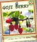 goji-berry-front-medium