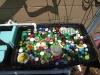bin-with-bottle-caps-medium