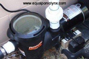 New Pool Pump