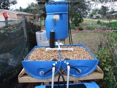 Barrel-ponics aquaponics-system