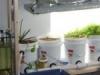 Breeding-room-150x150