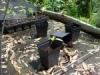 Matting-on-neglected-raft-Medium-150x150