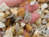 gravel-shell-mix-150x150