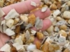 gravel-shell-mix-150x97