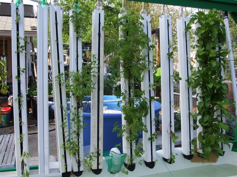Vertical Aquaponics Hanging Zipgrow Towers Aquaponic