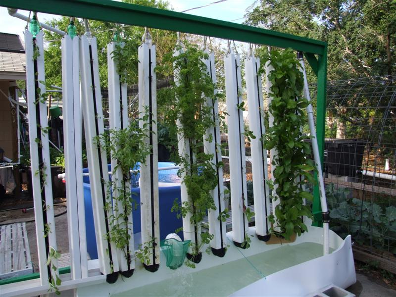 Vertical Aquaponics Towers Must See 농업