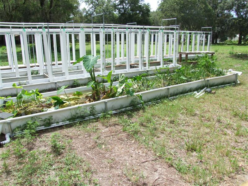Aquaponics Rail beds and troughs