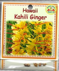 Hawaii Kahili Ginger